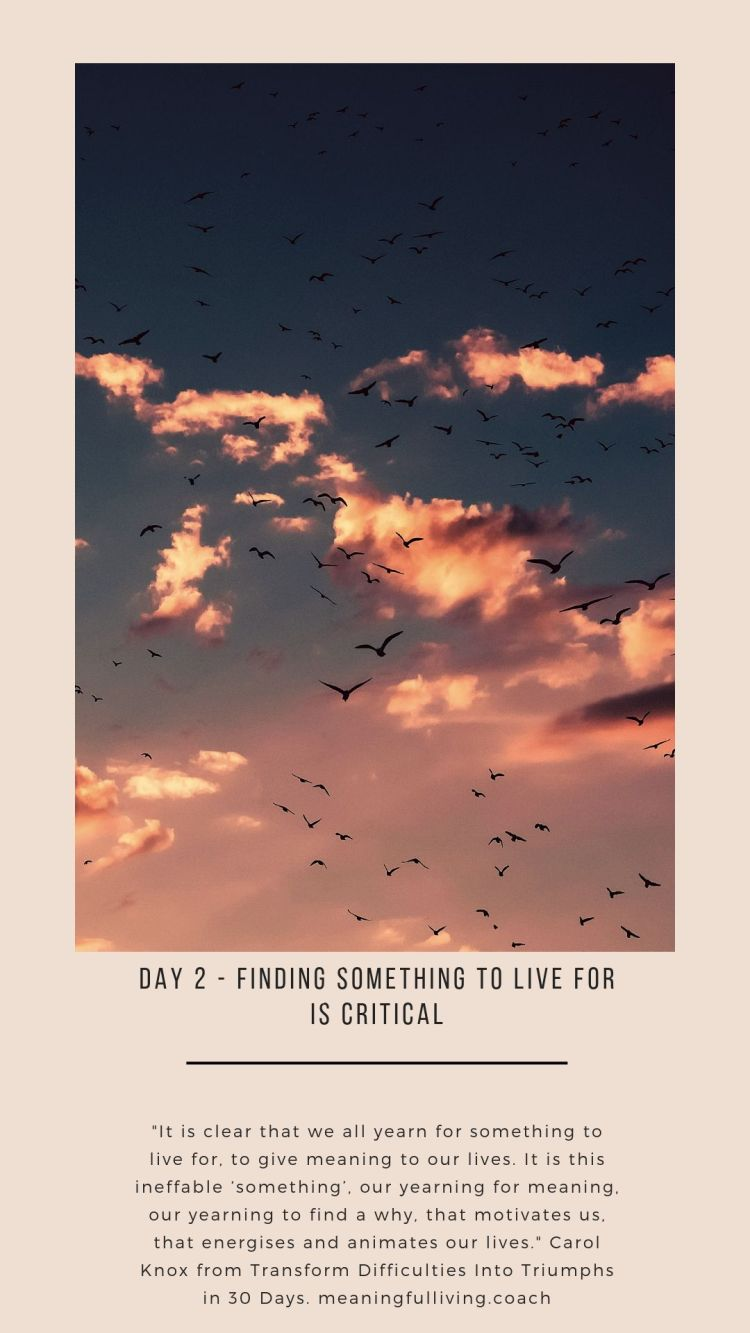 finding something to live for